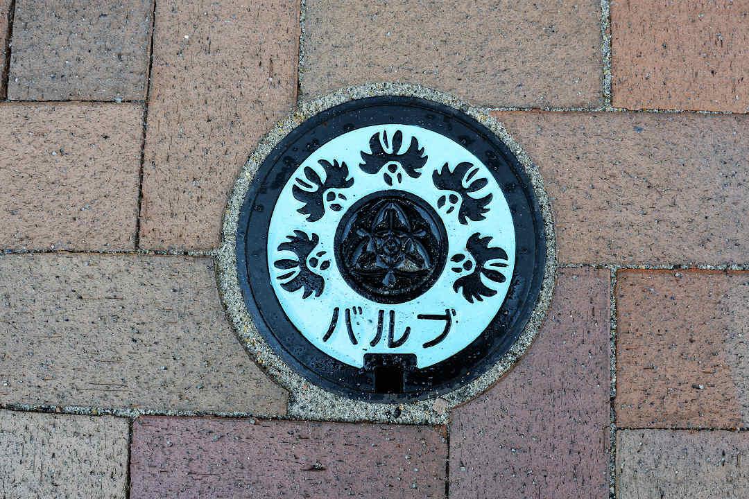 京都を歩く(13)姫路城へ_a0148206_19263664.jpg
