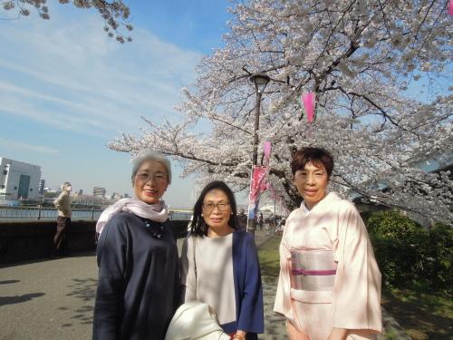 隅田川 堤堤公園 散策のお花見_e0116211_11072000.jpg