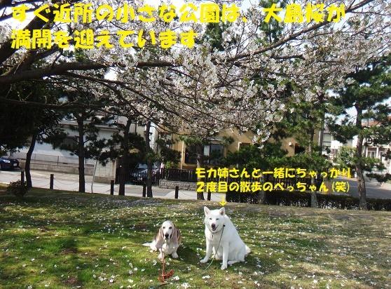 f0121712_14273212.jpg
