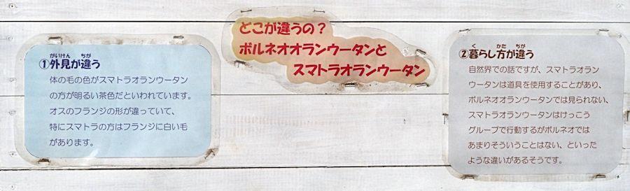 f0224624_19553115.jpg