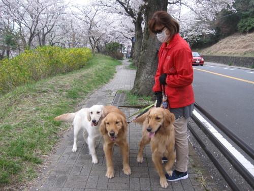 ゴーちゃんとあっちゃんとジョジョさん_e0350927_18261623.jpg