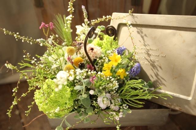 お花見弁当 _d0086634_20504179.jpg
