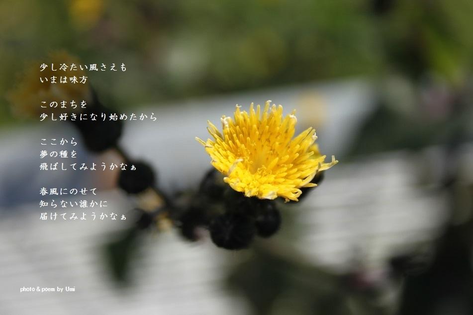 f0351844_17145311.jpg