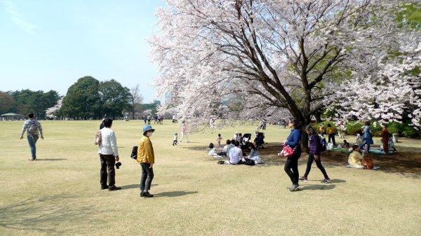 新宿御苑_e0129750_21581265.jpg