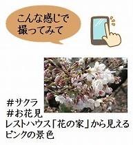 f0203094_14072064.jpg
