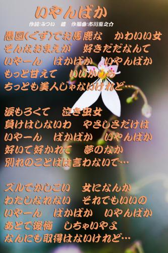 d0095910_13555614.jpg