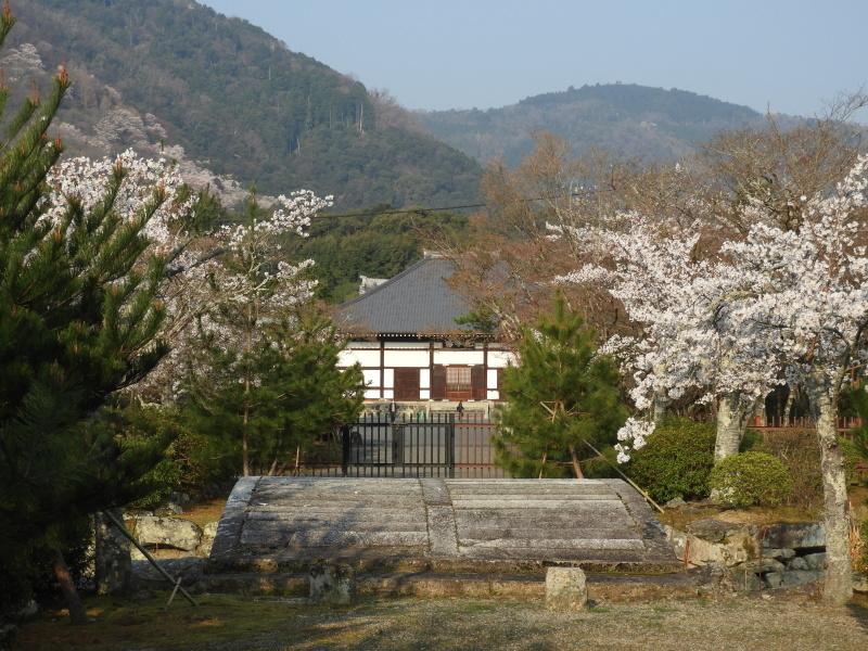 嵐山と天龍寺_e0048413_17221876.jpg