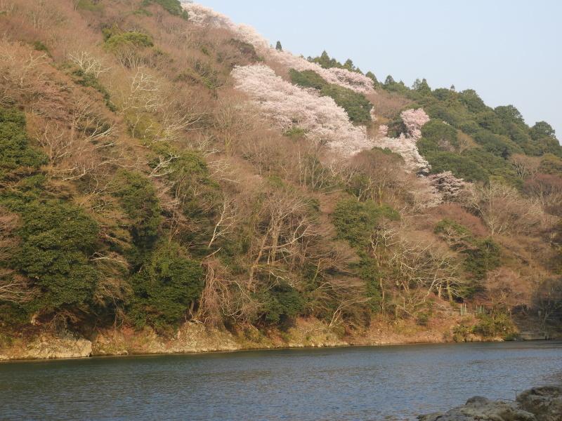 嵐山と天龍寺_e0048413_17230710.jpg