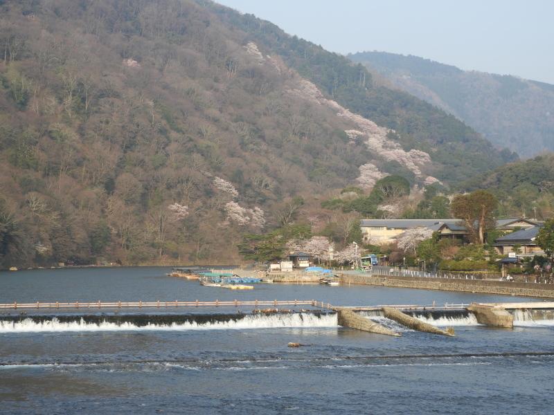 嵐山と天龍寺_e0048413_17232850.jpg