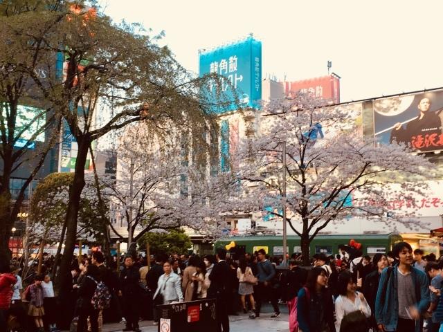 【舗装10日目】工事は順調!夜は渋谷へ_c0224820_23493458.jpeg