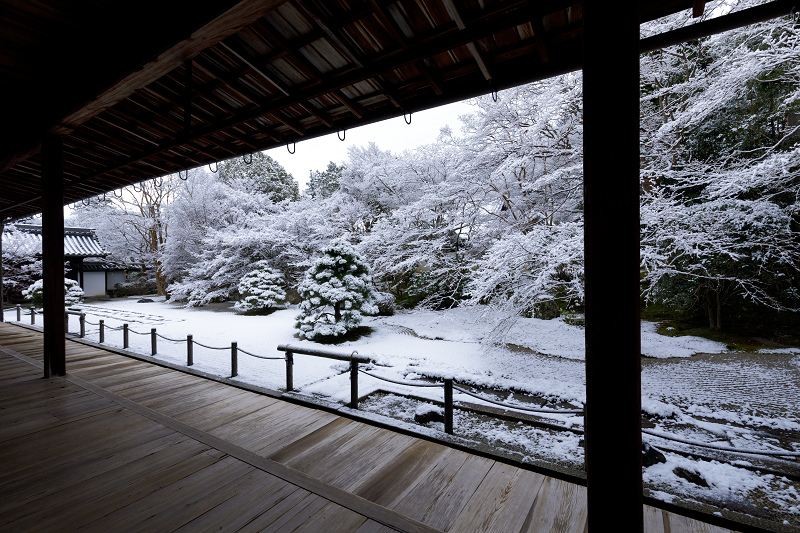 雪の京都2018 白く染まる天授庵の庭_f0155048_2317151.jpg
