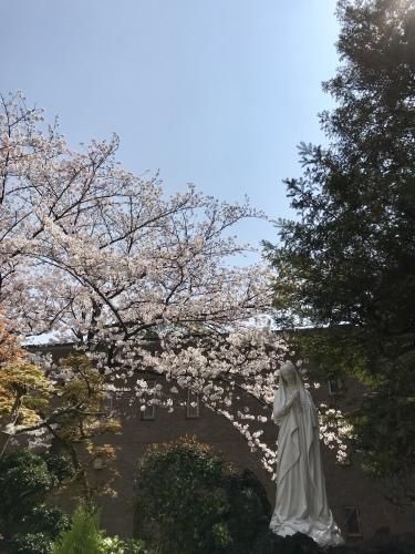 春爛漫・横浜山手デート_b0307951_23014466.jpg