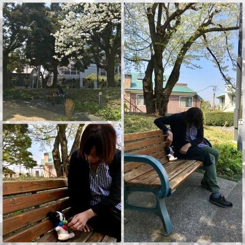 春爛漫・横浜山手デート_b0307951_23045424.jpg