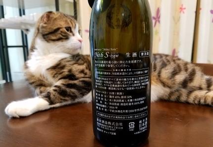 モデル猫さく 爆笑♪_c0151053_23072064.jpg