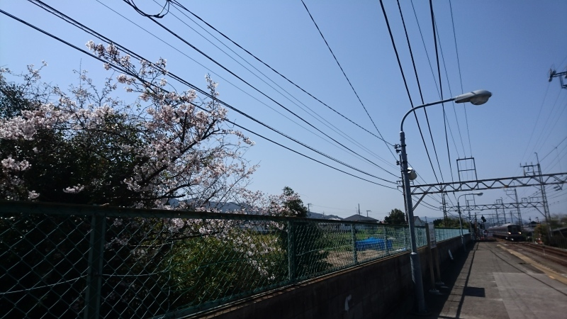 イオン和歌山で昼食_c0108460_22421369.jpg
