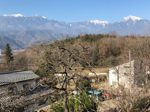 シマヤの裏庭は今桜はこんな感じです。_d0338282_08060266.jpg