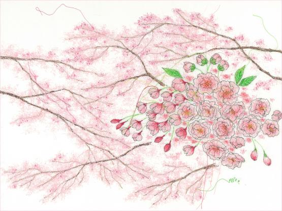「花咲く頃」グループ展参加のお知らせ_d0121897_00030103.jpg
