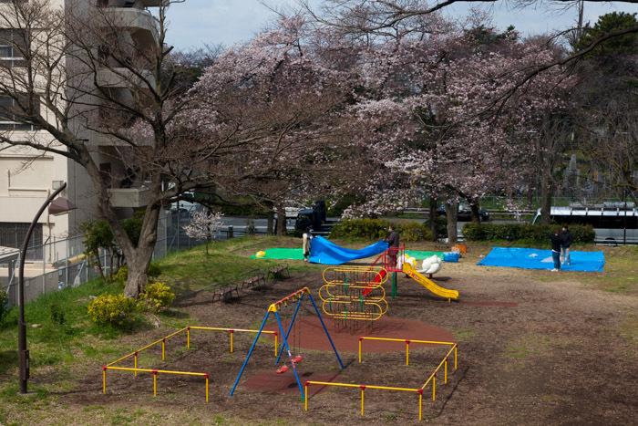 公園_a0347300_00110573.jpg