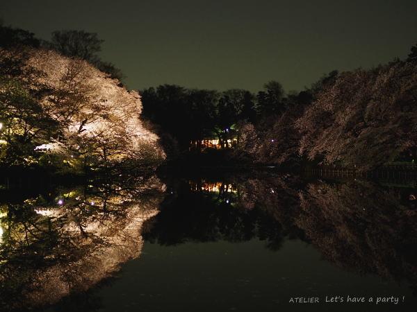井の頭公園で桜のリフレクションを楽しみました♪_c0082921_08525505.jpg