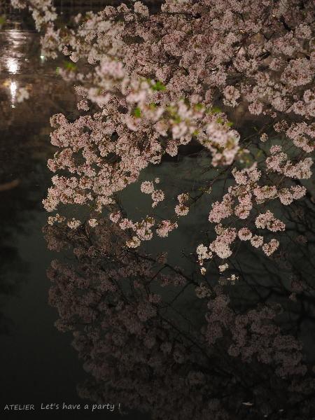 井の頭公園で桜のリフレクションを楽しみました♪_c0082921_08582394.jpg