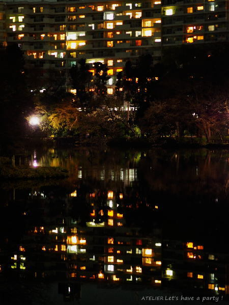 井の頭公園で桜のリフレクションを楽しみました♪_c0082921_08585436.jpg
