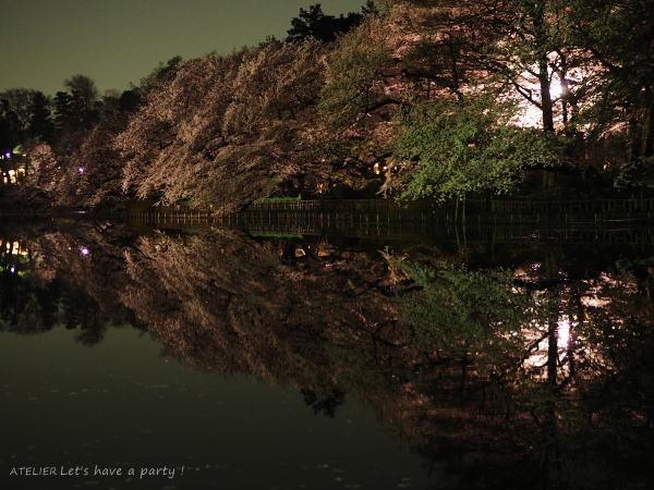 井の頭公園で桜のリフレクションを楽しみました♪_c0082921_08592919.jpg