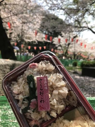 JRとくとく切符で都内へお出かけ巡り♪上野恩賜公園の桜&東京都美術館(AJC)_f0023333_22340107.jpg