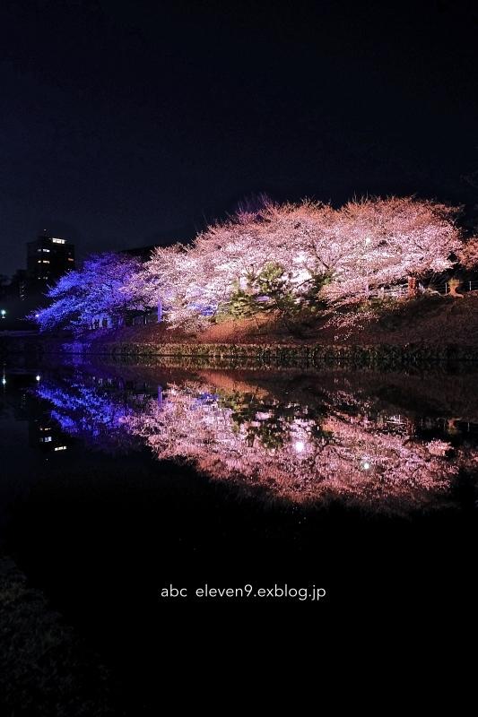 福岡城さくらまつり_f0315034_16075245.jpg