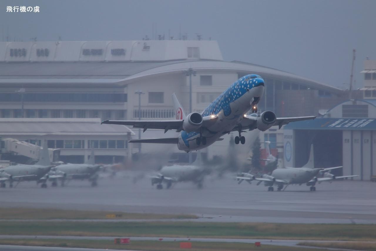小雨の中を離陸  ジンベエジェット  日本トランスオーシャン航空(NU)_b0313338_00592766.jpg