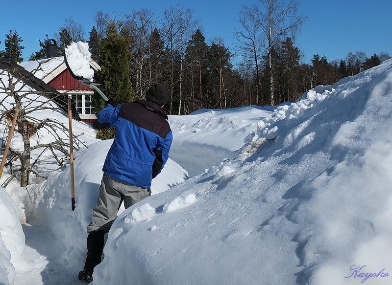 まだ雪かき_a0353839_06483124.jpg