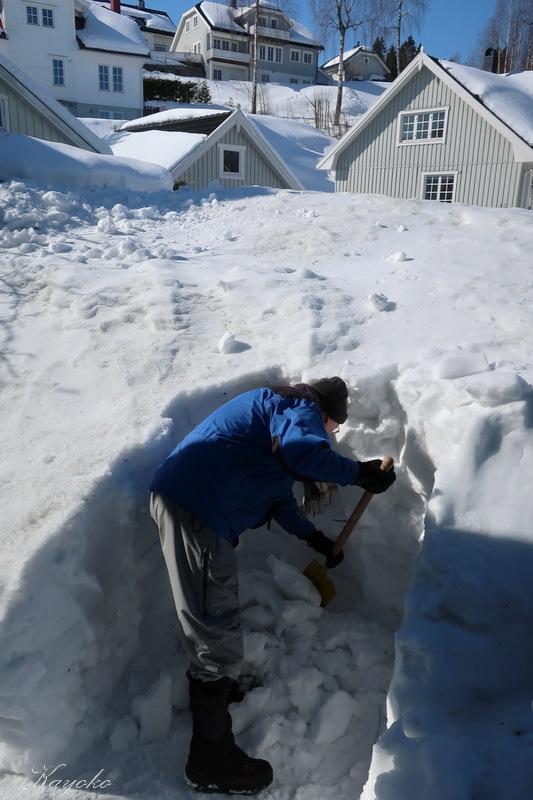 まだ雪かき_a0353839_06532619.jpg