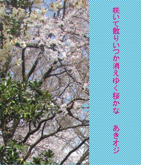 f0117041_04240022.jpg