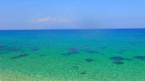 海へだるまさんころんだ。_b0160957_16440807.jpg