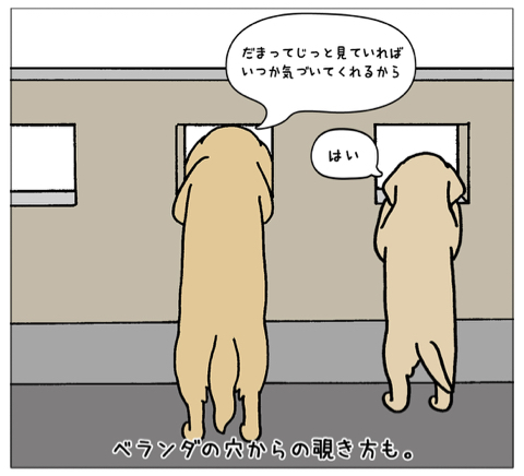エフ漫画『エフの教え』_c0033759_21010143.jpg