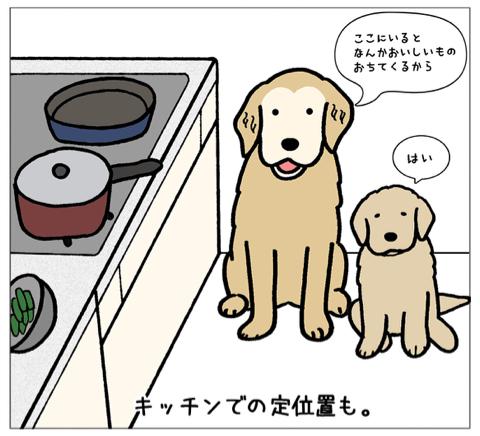 エフ漫画『エフの教え』_c0033759_21010146.jpg
