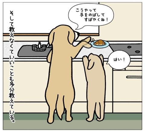 エフ漫画『エフの教え』_c0033759_21314692.jpg