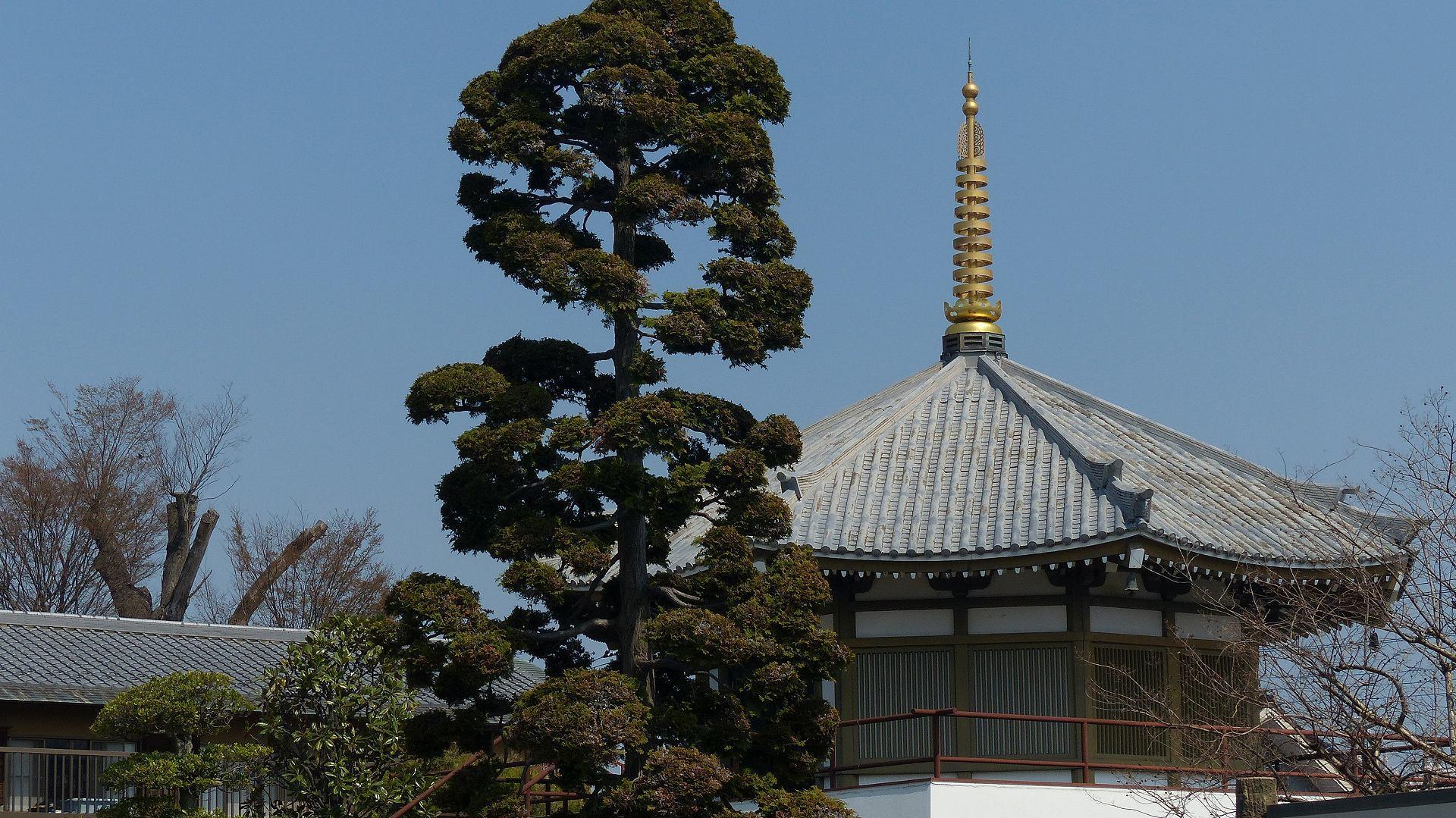 花見のあとは社寺を巡る_a0185081_14165968.jpg