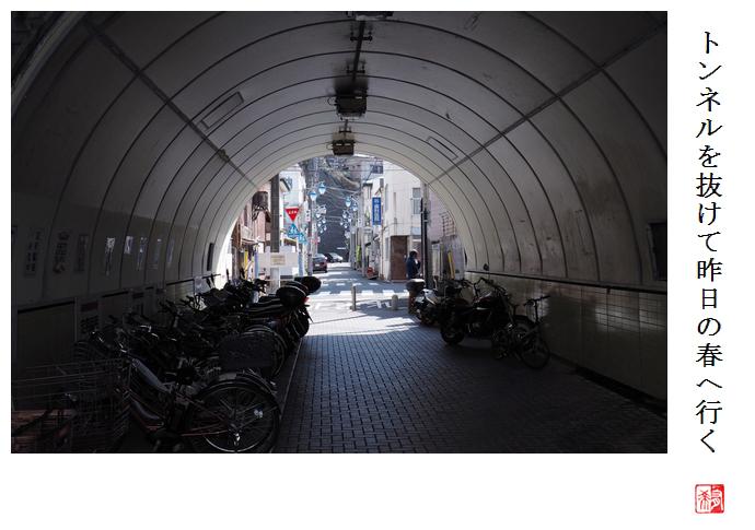 トンネルを抜けて昨日の春へ行く_a0248481_21273692.jpg
