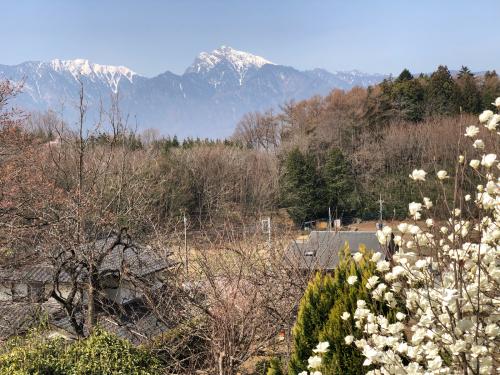 div>桜桜桜桜咲くか_d0338282_11322842.jpg