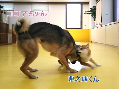 トレーニングブログ_f0357682_20123084.jpg