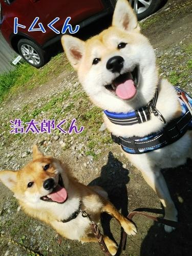 トレーニングブログ_f0357682_20143846.jpg