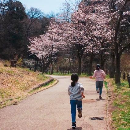 春の里帰り🌸_d0178587_20075506.jpeg