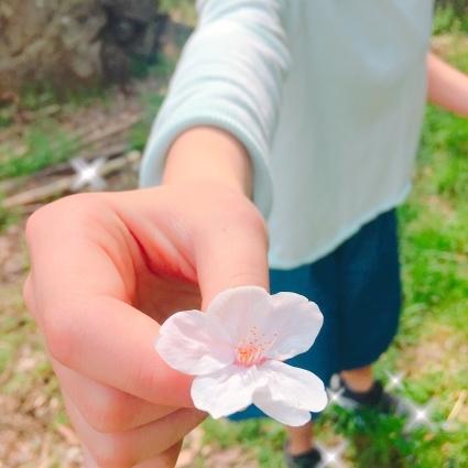 春の里帰り🌸_d0178587_20125854.jpeg