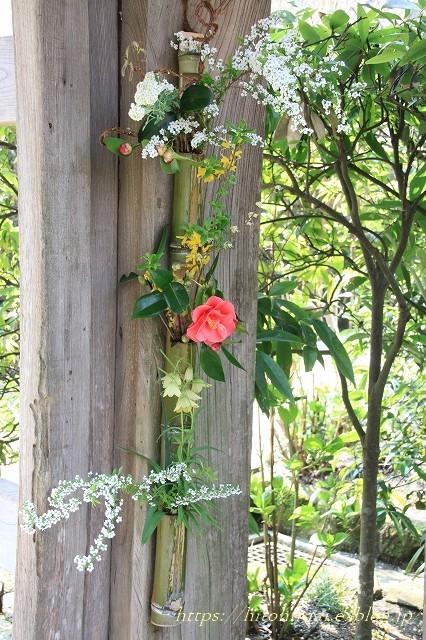 鎌倉の桜 明月院_f0374092_21362147.jpg