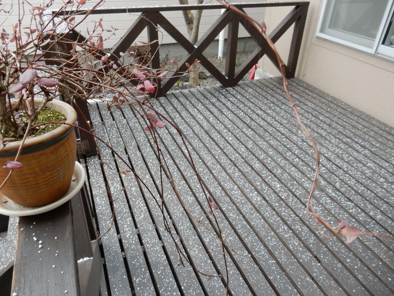 名残の雪か_c0025115_21211178.jpg