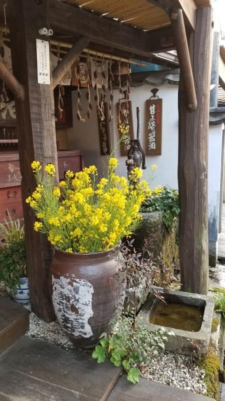 醤油屋の春_c0357333_19220526.jpg
