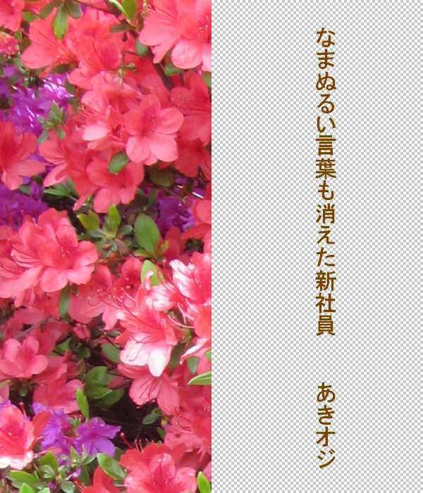 f0117041_05303498.jpg