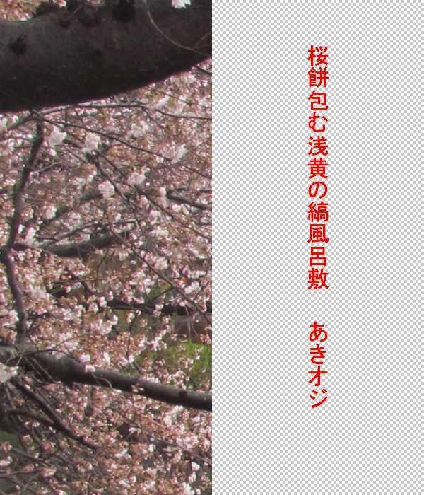 f0117041_18483753.jpg