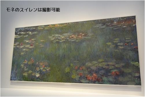 飛鳥Ⅱ 春のクルーズ④ 東京美術館巡り & 紫陽花挿し木の結果_a0084343_11072926.jpg