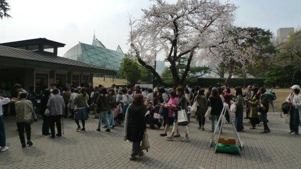 新宿御苑(4)_e0129750_18404103.jpg